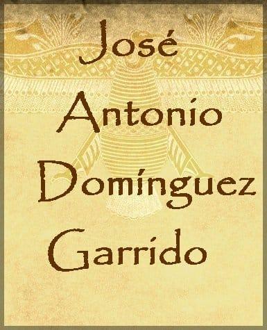 José Antonio Domínguez Garrido