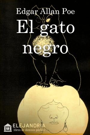 Descargar El gato negro de Allan Poe, Edgar